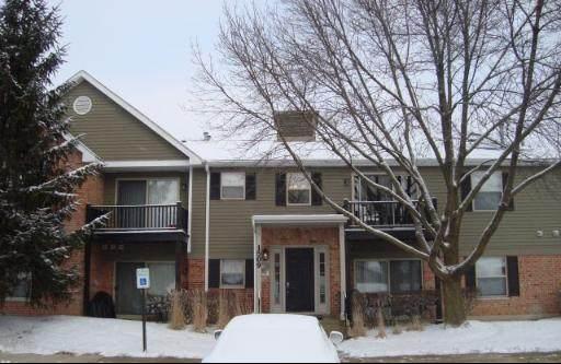 1509 Raymond Drive #202, Naperville, IL 60563 (MLS #11064128) :: Littlefield Group