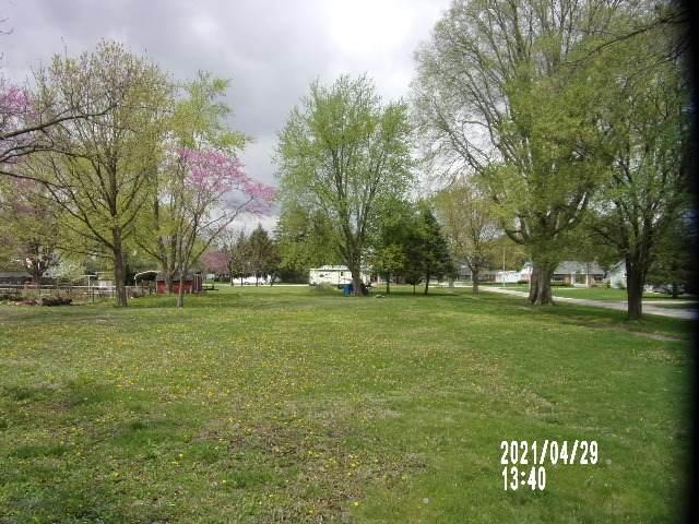 201 N Moore Street, McLean, IL 61754 (MLS #11070434) :: Janet Jurich