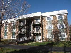1627 N Windsor Drive #206, Arlington Heights, IL 60004 (MLS #11071932) :: Helen Oliveri Real Estate