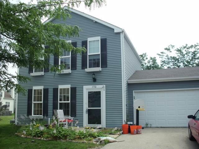 1750 Wild Flower Lane, Aurora, IL 60504 (MLS #11074031) :: Jacqui Miller Homes
