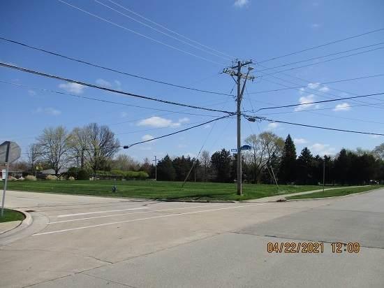 1320 Theodore Street, Crest Hill, IL 60403 (MLS #11074271) :: Littlefield Group