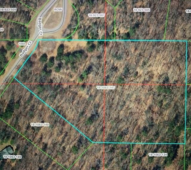 Lot 48 Badger Court, Arkdale, WI 54613 (MLS #11076115) :: Helen Oliveri Real Estate