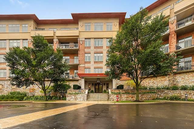 115 Prairie Park Drive #205, Wheeling, IL 60090 (MLS #11076628) :: Helen Oliveri Real Estate