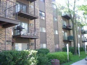 8894 Knight Avenue #216, Des Plaines, IL 60016 (MLS #11077696) :: Littlefield Group