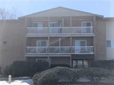 910 Beau Drive #209, Des Plaines, IL 60016 (MLS #11078776) :: Littlefield Group