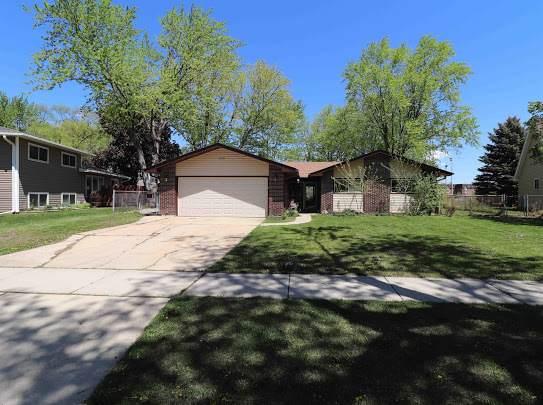 223 Sumac Lane, Schaumburg, IL 60193 (MLS #11079227) :: Helen Oliveri Real Estate