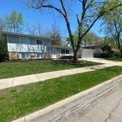 132 Berry Street, Park Forest, IL 60466 (MLS #11079572) :: Helen Oliveri Real Estate