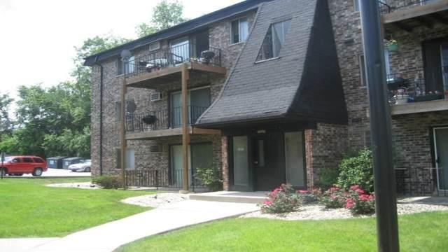 1005 E 194th Street #304, Glenwood, IL 60425 (MLS #11079686) :: Helen Oliveri Real Estate