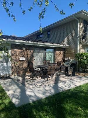1425 Ellisville Lane #1425, Schaumburg, IL 60193 (MLS #11079802) :: Helen Oliveri Real Estate