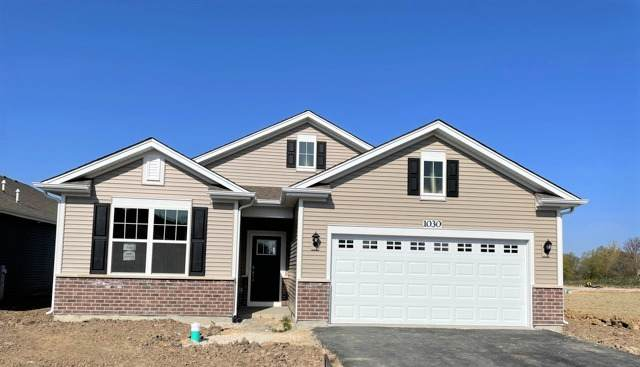 1009 Fitzwilliam Way, North Aurora, IL 60542 (MLS #11081293) :: Carolyn and Hillary Homes