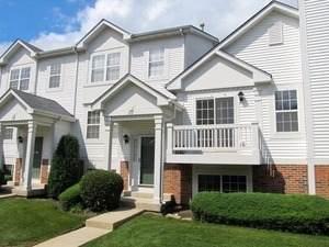 272 Holiday Lane, Hainesville, IL 60030 (MLS #11085950) :: Helen Oliveri Real Estate