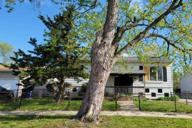 1408 Ambassador Lane, Ford Heights, IL 60411 (MLS #11088255) :: Angela Walker Homes Real Estate Group