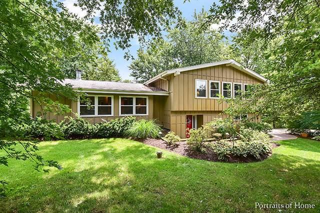 1N281 Prairie Avenue, Glen Ellyn, IL 60137 (MLS #11088952) :: Helen Oliveri Real Estate