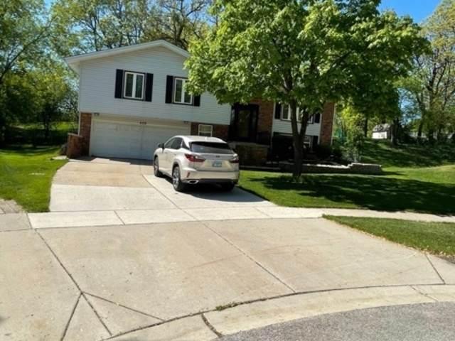 609 Tilipi Lane, Schaumburg, IL 60193 (MLS #11089034) :: Schoon Family Group
