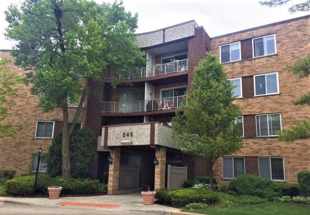 245 S Park Lane #415, Palatine, IL 60074 (MLS #11089815) :: BN Homes Group
