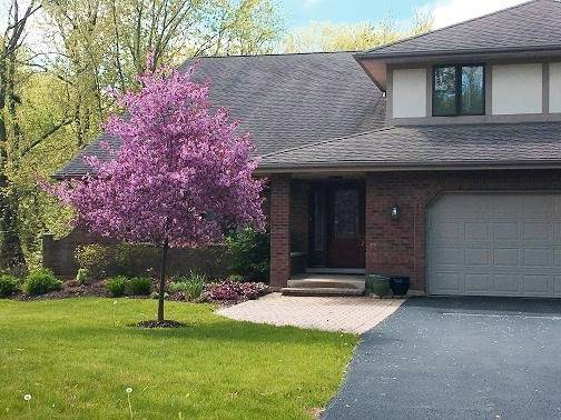 5N575 Hidden Springs Drive, St. Charles, IL 60175 (MLS #11090612) :: BN Homes Group