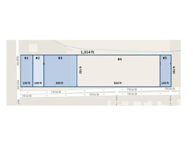 lot 3 191st Street, Mokena, IL 60448 (MLS #11091054) :: Schoon Family Group