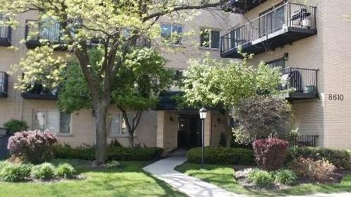 8610 Waukegan Road 408W, Morton Grove, IL 60053 (MLS #11091475) :: Littlefield Group