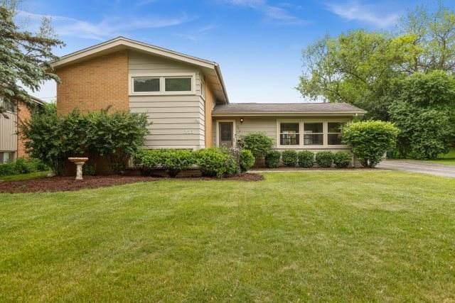 253 W Cheryl Lane, Palatine, IL 60067 (MLS #11091481) :: BN Homes Group
