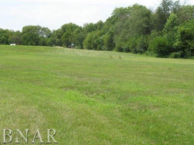 LOT 6 Northridge Circle, CLINTON, IL 61727 (MLS #11091591) :: Littlefield Group