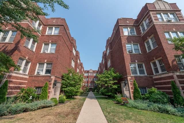 240 S Maple Avenue 2W, Oak Park, IL 60302 (MLS #11091645) :: Helen Oliveri Real Estate
