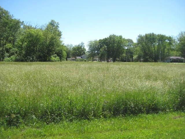 Lot 6 N Walker Street, Braidwood, IL 60408 (MLS #11110437) :: Helen Oliveri Real Estate