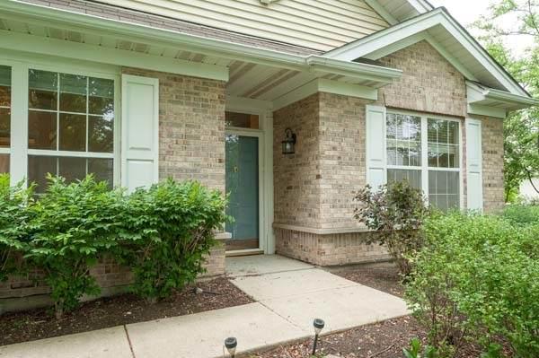 69 Ashbrook Court, Grayslake, IL 60030 (MLS #11111082) :: Jacqui Miller Homes