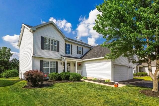 225 Christine Way, Bolingbrook, IL 60440 (MLS #11114182) :: O'Neil Property Group