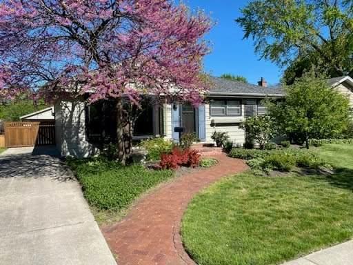 503 N Russel Street, Mount Prospect, IL 60056 (MLS #11116567) :: Ryan Dallas Real Estate