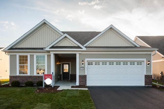 2067 Samantha Joy Lane, Bolingbrook, IL 60490 (MLS #11117084) :: BN Homes Group