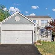 29 Wildflower Way, Streamwood, IL 60107 (MLS #11119871) :: Ryan Dallas Real Estate