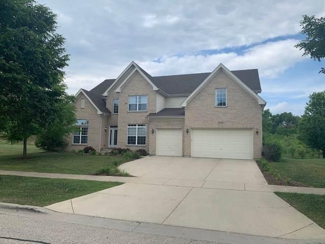 5440 Nicholson Drive, Hoffman Estates, IL 60192 (MLS #11120644) :: Ryan Dallas Real Estate