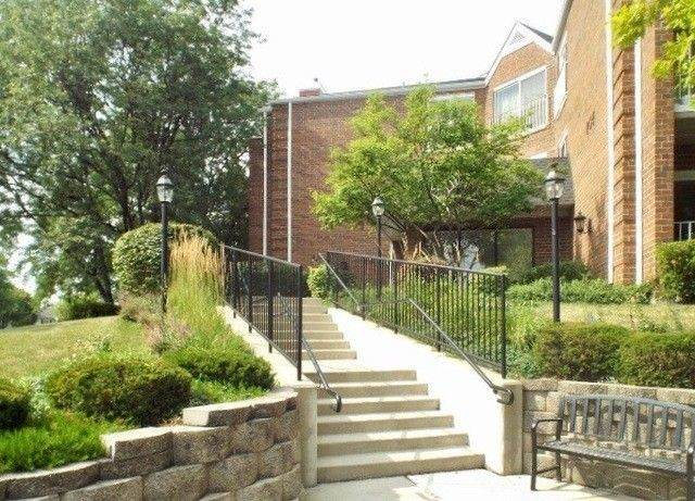 805 Leicester Road #312, Elk Grove Village, IL 60007 (MLS #11121004) :: Suburban Life Realty