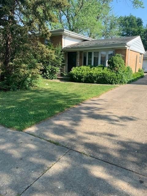 4436 N Redwood Drive, Norridge, IL 60706 (MLS #11121104) :: BN Homes Group
