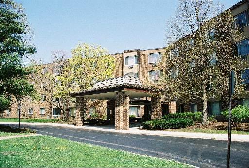 1375 Rebecca Drive #321, Hoffman Estates, IL 60169 (MLS #11121562) :: Touchstone Group