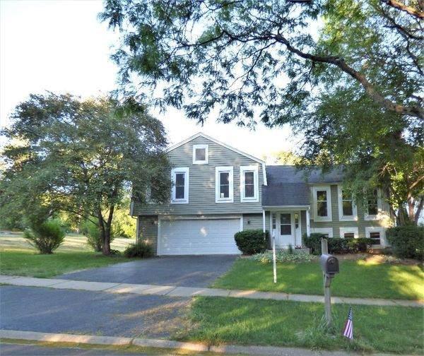 211 Lexington Avenue, Fox River Grove, IL 60021 (MLS #11121826) :: Lewke Partners