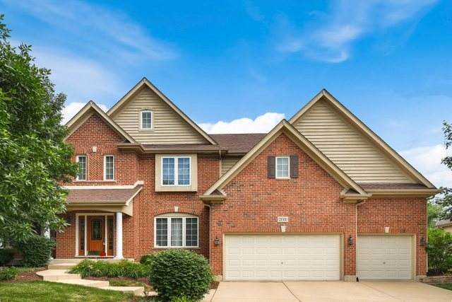 12000 Willow Ridge Drive, Willow Springs, IL 60480 (MLS #11122346) :: The Wexler Group at Keller Williams Preferred Realty