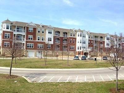 2750 Commons Drive #211, Glenview, IL 60026 (MLS #11123188) :: Ryan Dallas Real Estate