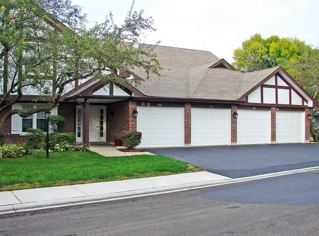 244 Southwick Court #50, Vernon Hills, IL 60061 (MLS #11123532) :: Helen Oliveri Real Estate