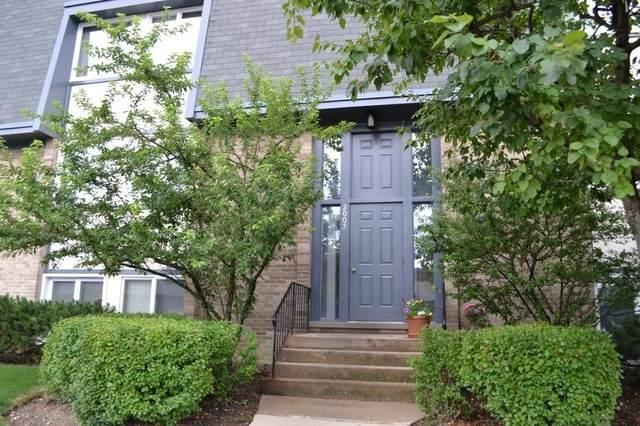 2005 Ammer Ridge Court #301, Glenview, IL 60025 (MLS #11124183) :: Ryan Dallas Real Estate