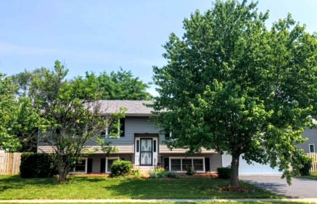 524 7th Circle, Marengo, IL 60152 (MLS #11125348) :: O'Neil Property Group