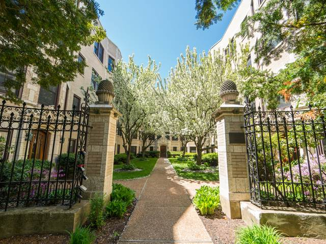 828 Judson Avenue #1, Evanston, IL 60202 (MLS #11126551) :: John Lyons Real Estate