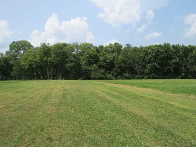 Lot 11 Shorewood Estates Drive, St. Anne, IL 60964 (MLS #11127041) :: RE/MAX Next