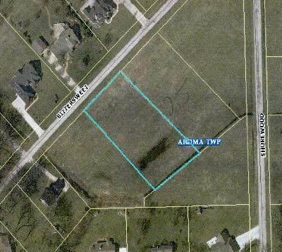 Lot 26 Shorewood Estates Street, St. Anne, IL 60964 (MLS #11127056) :: BN Homes Group