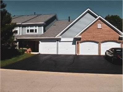 1304 Nutmeg Court A, Mount Prospect, IL 60056 (MLS #11131439) :: Carolyn and Hillary Homes
