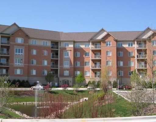 125 N Buffalo Grove Road #211, Buffalo Grove, IL 60089 (MLS #11146629) :: O'Neil Property Group