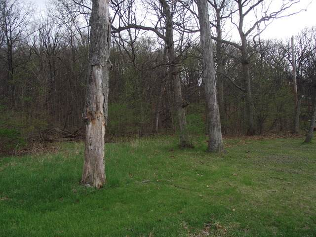 lot 012 Tuscola Avenue, St. Charles, IL 60174 (MLS #11150341) :: The Wexler Group at Keller Williams Preferred Realty