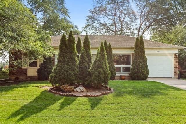 1307 Alexander Avenue, Streamwood, IL 60107 (MLS #11152775) :: O'Neil Property Group
