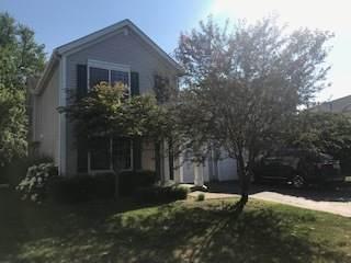 143 W Aldridge Lane, Round Lake, IL 60073 (MLS #11155943) :: O'Neil Property Group