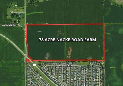 000 S Nacke Road, Beecher, IL 60401 (MLS #11161356) :: O'Neil Property Group
